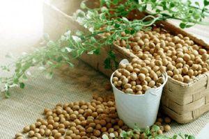 Áp lực chốt lời tác động mạnh lên các mặt hàng nông sản trên thế giới phiên cuối tuần