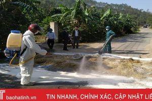 Lộc Hà gấp rút triển khai nhiều biện pháp bảo vệ đàn lợn 12.355 con