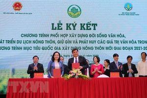 Khơi dậy tiềm năng phát triển du lịch nông nghiệp nông thôn