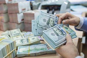 Tỷ giá ngoại tệ hôm nay (21/11): USD, Euro 'bất động', NDT tăng thêm 7 đồng