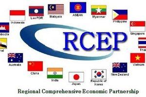 Hiệp định Kinh tế lớn nhất thế giới: Trung Quốc có thể hưởng lợi nhiều hơn về mặt tuyệt đối, còn Việt Nam?