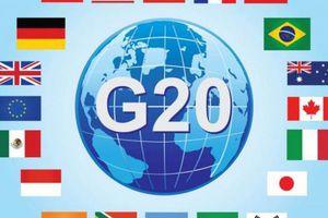 WTO hối thúc G20 tăng cường hỗ trợ cho các nước đang phát triển