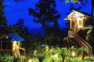 'Nhà tổ chim' ở Sin Suối Hồ - Điểm nhấn thu hút khách du lịch