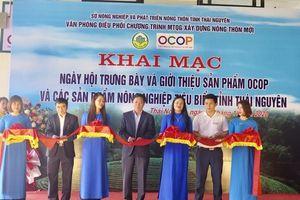 Thái Nguyên: Trưng bày sản phẩm OCOP và sản phẩm nông nghiệp tiêu biểu