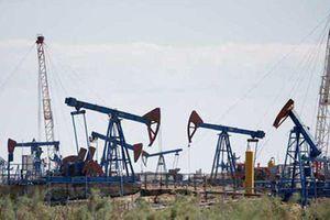 Giá xăng, dầu (23/11): Mất đà tăng ngay ngày đầu tuần