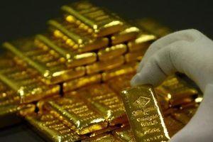 Giá vàng hôm nay 23/11: Tuần mới, đà tăng của giá vàng vẫn bị cản trở