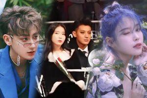 Công khai tỏ tình cầu hôn IU, TAO (cựu thành viên EXO) bị ném đá dữ dội