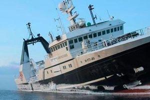 Bắc Cực đối mặt với hiểm họa tràn dầu