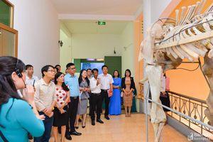 Xây dựng Bảo tàng trở thành điểm đến văn hóa hấp dẫn