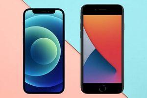 Thích smartphone nhỏ cao cấp, nên chọn iPhone 12 mini hay iPhone SE 2020?