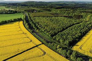 Gỡ rào cản giao dịch đất nông nghiệp
