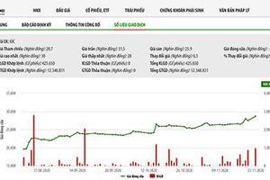 9 nhà đầu tư trong nước đăng ký mua vượt 17% lượng chào bán cổ phiếu Idico