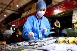 Mới: Thực phẩm nhập khẩu từ các nước có dịch Covid-19 phải xét nghiệm SARS-CoV-2