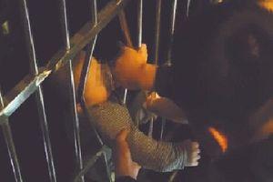 Hàng xóm cứu bé trai tại Trung Quốc khi rơi từ tầng 13