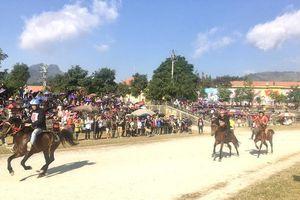 Ấn tượng giải đua ngựa trên cao nguyên Bắc Hà