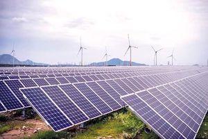 Điện mặt trời có thực sự điện 'xanh'?