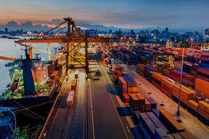 Ngành logistics - 'xương sống' của chuỗi cung ứng ảnh hưởng nặng bởi Covid-19