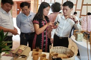 Hơn 27.000 người dân tỉnh Quảng Nam và Thừa Thiên Huế tăng thu nhập từ dự án cải thiện sinh kế