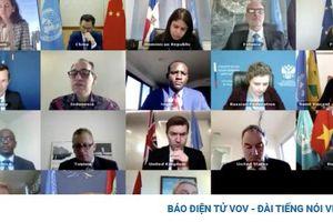 Việt Nam ủng hộ vai trò tích cực của Phái bộ Liên Hợp Quốc hỗ trợ Iraq