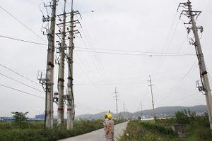 Công ty Điện lực Bắc Ninh: Ứng dụng hiệu quả công nghệ thông tin trong sản xuất, kinh doanh