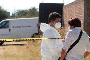 Phát hiện 113 thi thể trong ngôi mộ tập thể bí ẩn ở Mexico