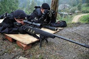 Xếp hạng 10 súng bắn tỉa hiện đại 'đỉnh' nhất thế giới 2020 (P2)