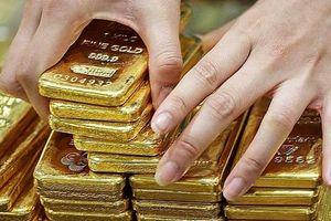 Thị trường vàng đồng loạt chững giá