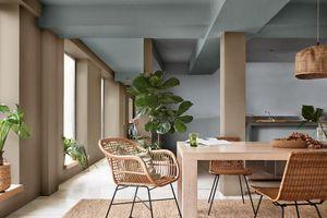 Thanh lọc không khí trong nhà hiệu quả với những giải pháp có nguồn gốc tự nhiên