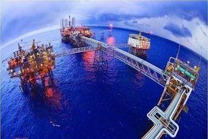 Dự báo giá dầu: Giá dầu đồng hành cùng vaccine Covid-19