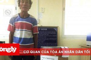 Xách tay hơn 10kg ma túy từ Campuchia về Việt Nam