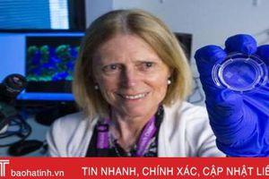 Thận nhân tạo từ công nghệ in 3D mang hy vọng cho bệnh nhân ghép tạng