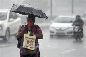 Bão Nivar lớn gây nhiều thiệt hại tại Ấn Độ