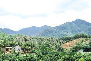 Khánh Sơn: Mong được đầu tư 2 hồ thủy lợi