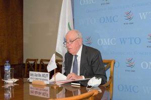 Phó Tổng giám đốc WTO kêu gọi Trung Quốc, nhóm Ottawa và các nước G20 thúc đẩy cải cách WTO