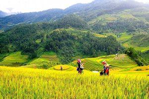 Tổng kết phát triển kinh tế - xã hội vùng đồng bào dân tộc thiểu số miền núi của Thủ đô
