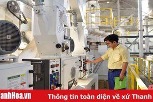 Cận cảnh nhà máy chế biến gạo đầu tiên tại Thanh Hóa