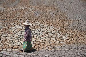 Xây dựng khả năng chống chịu hạn hán ở Đông Nam Á