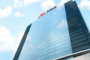 VSD nhận lưu ký 1.175 triệu cổ phiếu MSB từ ngày 27/11