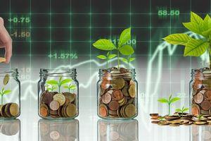 Thị trường tài chính 24h: Đầu tư forex gây ra rất nhiều hệ lụy