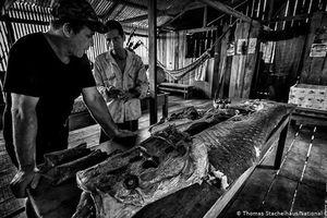 Trải nghiệm rừng rậm Amazon của ngôi sao Till Lindermann
