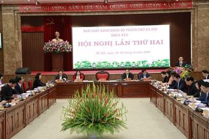 Năm 2021, Ban chấp hành Đảng bộ Thành phố Hà Nội dự kiến triển khai 2 cuộc kiểm tra, 1 cuộc giám sát chuyên đề