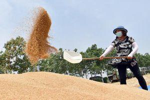 Trung Quốc bảo vệ đất nông nghiệp thế nào?