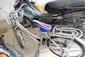 Hải Phòng: Nhóm 'giang hồ nhí' 10X cướp xe đạp bán lấy tiền chơi điện tử
