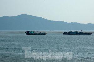 Dân phản đối đại dự án khai thác cát biển vùng biên: Tỉnh Quảng Ninh nói gì?