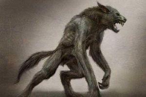 Top 10 câu chuyện đáng sợ về người sói