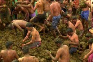 Kỳ lạ lễ hội ném phân bò ở Ấn Độ