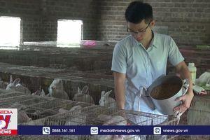Ninh Bình đồng hành giúp nông dân phát triển kinh tế