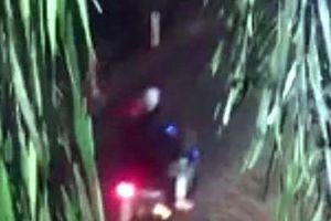 Phóng viên báo tin gỗ lậu cho Chi cục Kiểm lâm bị 2 kẻ bịt mặt đuổi chém