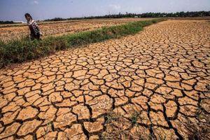 Phát hiện mới có thể giảm bức xạ Mặt Trời để hạn chế hạn hán tại châu Phi