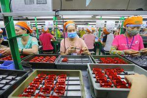 Bốn chính sách người lao động được hưởng khi tinh giản biên chế dẫn đến mất việc làm